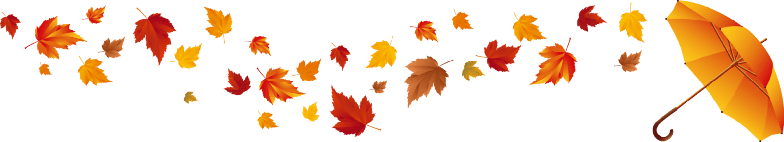 Осенний листопад цен Самогонщицы